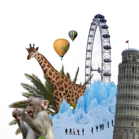 Image collage with various animals and landmarks.